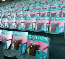 The Zenyatta section in the grandstand. Photo: Gloria Ubardelli.