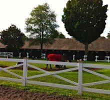 The Phipps Stable at Saratoga. Photo by Sarah Campion