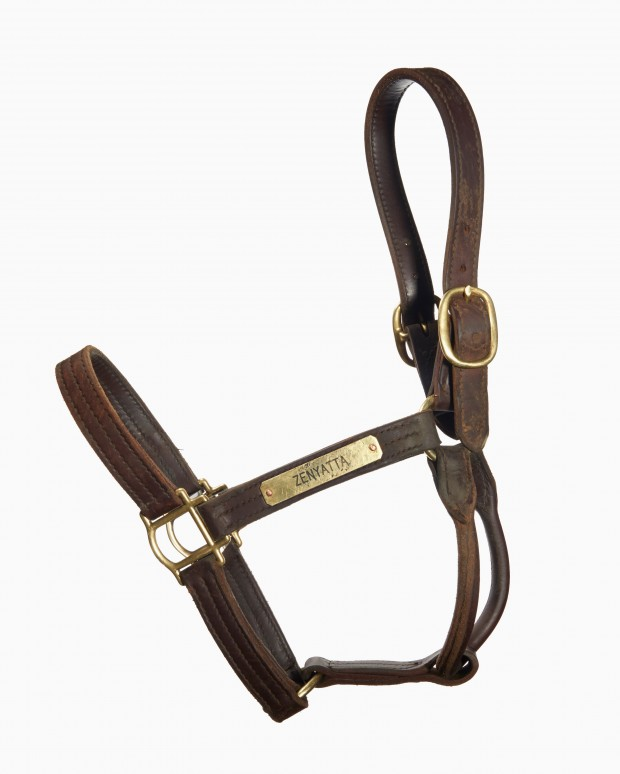 Lot 1: Zenyatta's halter. Photo by Tyler Matson.