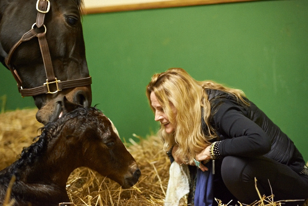 Ann greets the newest addition to the Zenyatta family. Photo by Kyle Acebo.