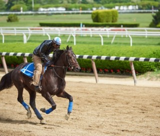 Cozmic One to Start at Belmont