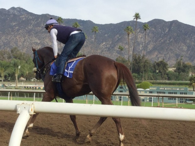 Ziconic under Mike Smith at Santa Anita