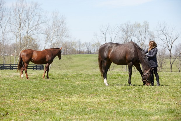 Zenyatta, turned out with Vixana, Ann Moss by her side.