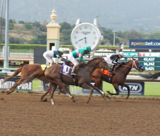 Ziconic finishing third at Santa Anita on May 14. Photo by Cynthia Holt.