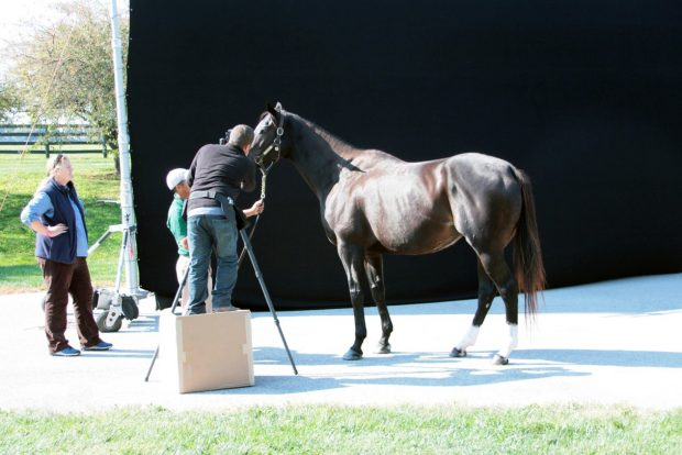 Behind the scenes at Zenyatta's photo shoot.