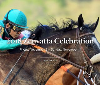 The Celebration website