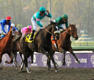 7 November 2009:  Zenyatta with Mike Smith up (#4) wins the G1 $5 Million Breeder's Cup Classic in Arcadia, California. Eric Patterson/Eclipse Sportswire